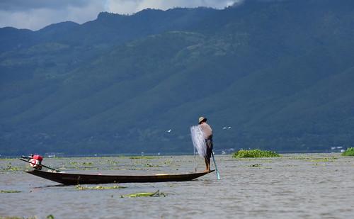 Inle lake, Myanmar (Birmania) D810 1237