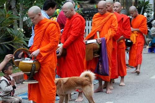 Van Ork Phansa monk procession elders