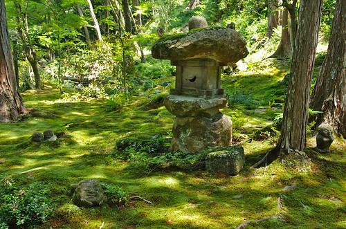 Temple Sanzen-in 三千院 - Ohara 大原
