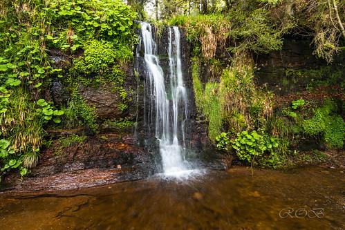 Wasserfall-29086-20190510.jpg
