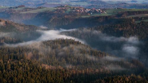 Breathing forest - Ein Wald atmet aus.
