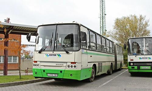 IYX-191 (4)