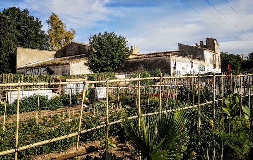 Los huertos urbanos alrededor del Casino del Americano y la Alquería de la Torre de Benicalap - Valencia