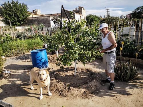 Ariadna y Nacho en los huertos urbanos existentes alrededor del Casino del Americano y la Alquería de la Torre - Ciudad Fallera - Benicalap - Valencia