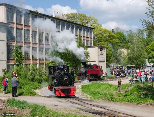 Narrow-gauge Steam Locomotives: Las Ty 1884 + U 46.903 + O&K 40 HP, 600 mm, Ct9 ● Žamberk, muzeum starých strojů ● 18.5.2019