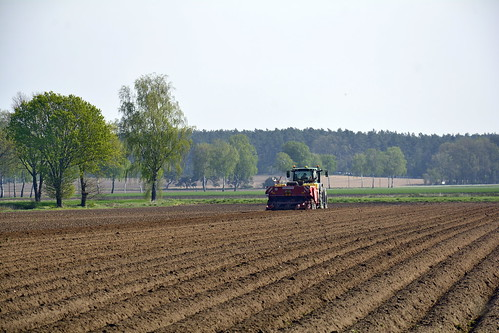 Germany - Lower Saxony - Potato Planting - 3