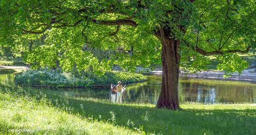 Norway Royal Garden 03