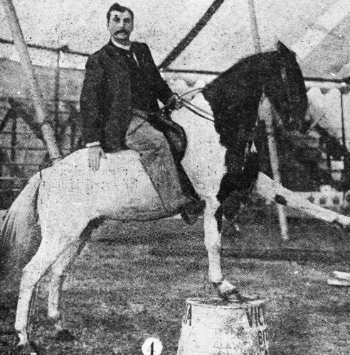 Philip Wirth astride a horse that is performing a trick under the circus big top, ca. 1903