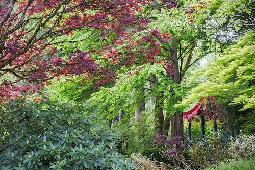 Asian Garden at Bear Creek Park (V2)
