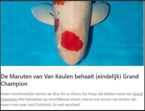 Rectificatie: Sanke van Van Keulen was allereerste tosai die het ooit tot Grand Champion schopte op Europese Koi Show