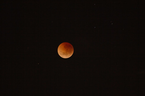 Four Consecutive Blood Moons