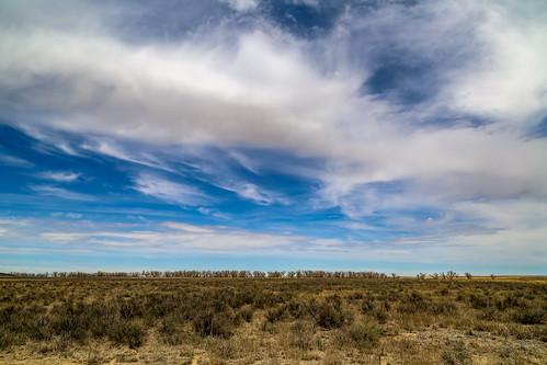 Sand Creek Horizon