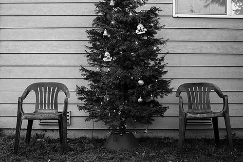 Christmas tree in back yard with lawn chairs and window