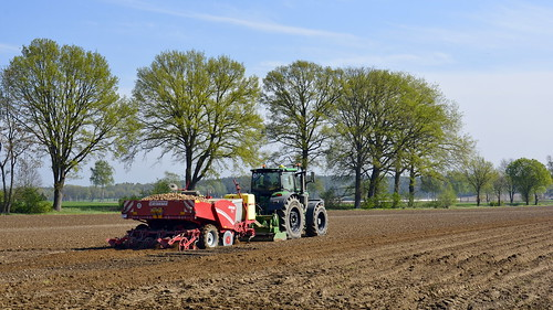 Germany - Lower Saxony - Potato Planting - 9