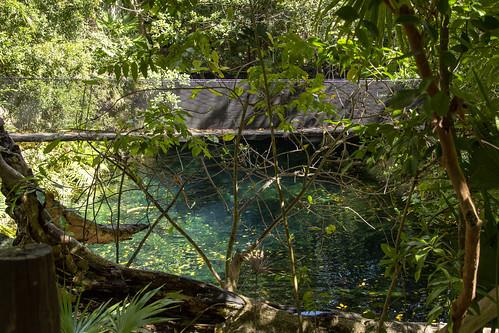 Walking bridge over Cenote de la Cascada, Sandos Caracol Eco Resort, Mexico