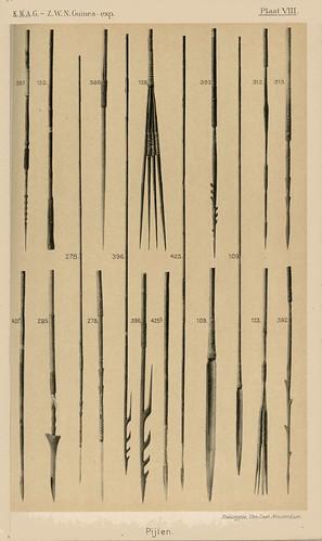 Zuidwest Nieuw-Guinea Expeditie 1904-1905 Plaat VIII