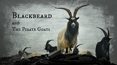 Blackbeard and the Pirate Goats