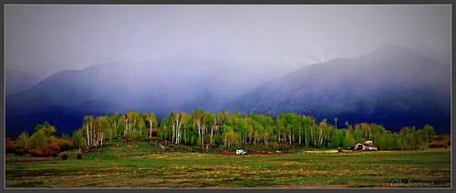 Mountain Fog~
