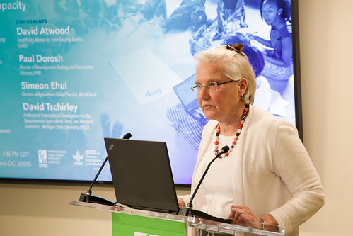Lessons from IFPRI Country Programs on Informing Policy Decisions and Strengthening Capacity