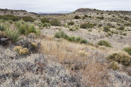 Western Sierra de las Uvas