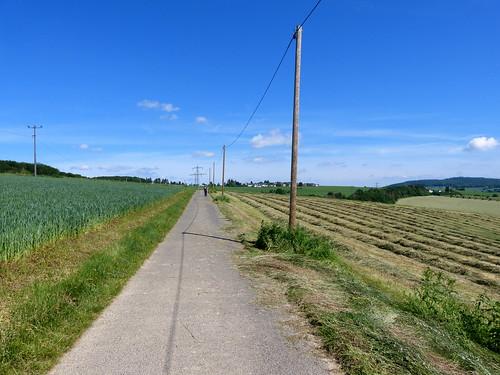 2019 Germany // WW-Lahnhöhenweg // Klaus