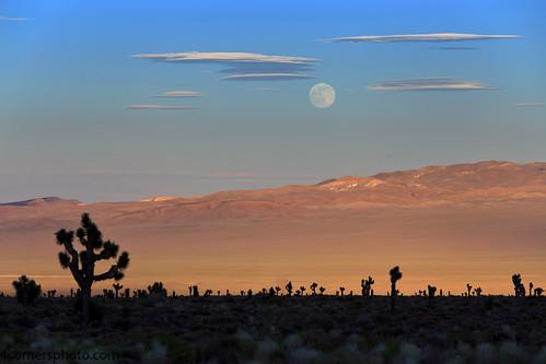Full Moon and Gold Mountain Range, Esmeralda County, NV