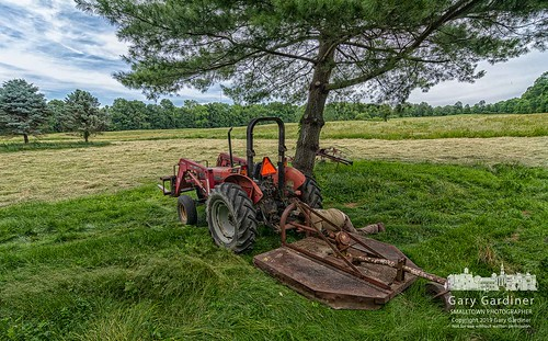 Ready To Cut Grass