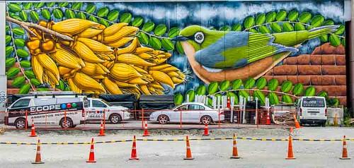 Christchurch colour