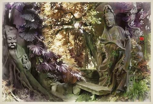 Secret Garden 秘密花