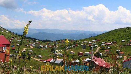 İmar barışı son günlerinde Karadeniz yaylaları kaçak yapı yarışı!