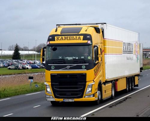 Volvo FH 4 Kamelia
