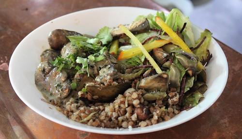 Pommes de terre & champignons, crème au sésame noir, kasha de sarrasin, salade de roquettes & salade de saison