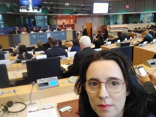 A Mesa participa en Bruxelas no Foro Rexional Europeo das Minorías, organizado pola ONU