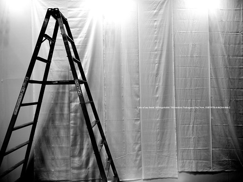 Stepladder and cloth. (FUJIFILM GFX50R shot)