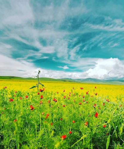 Hanaktan muhteşem manzara @mehmet__yener_ #photos #instagram #travel #nature #nice