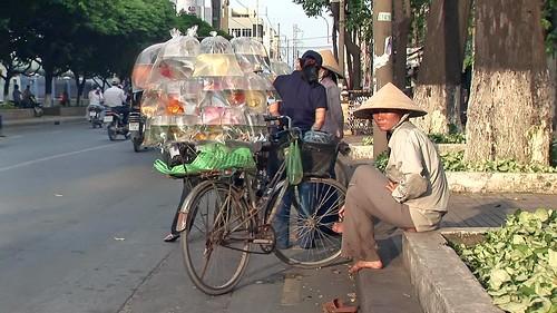 Vietnam - Hoi An - Streetlife - 1