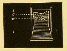 This image is taken from Page 39 of A manual of physiology : with practical exercises
