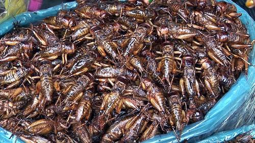 Cambodia - Phnom Penh - Central Market - Grasshoppers - 3