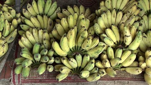 Cambodia - Phnom Penh - Central Market - Bananas