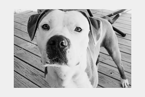 My best Bud! Sammy G