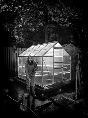 My Greenhouse!