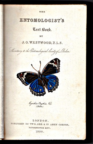 The Entomologist's Text Book, 1838