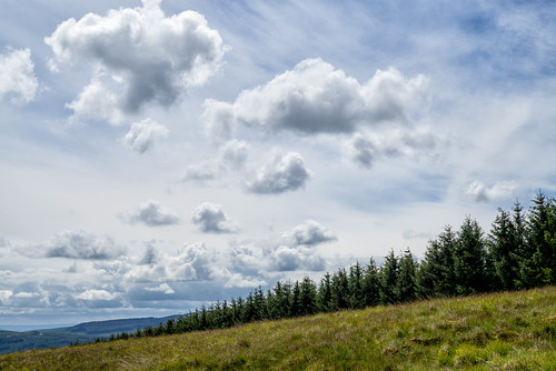 Clouds and the edge of Thornielee Forest, Scottish Borders