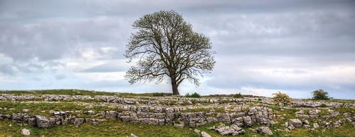 Limestone country near Malham, North Yorkshire