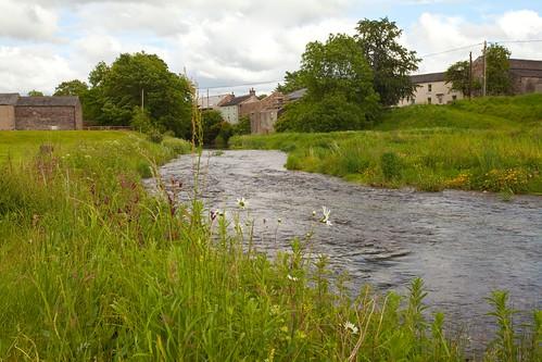 River Scandal Bec