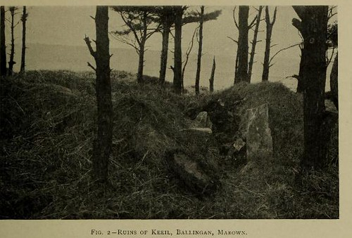 This image is taken from Manx crosses : or, The inscribed and sculptured monuments of the Isle of Man from about the end of the fifth to the beginning of the thirteenth century