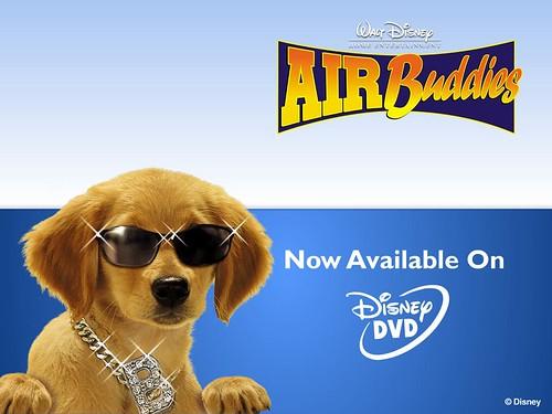Air Buddies-B-Dawg