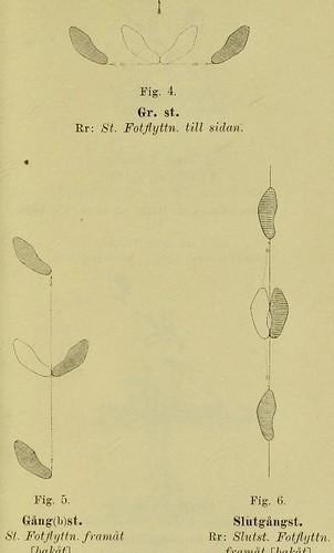 This image is taken from Page 19 of Handbok i gymnastik för arméen och flottan : utgifven pÃÂ¥ nÃÂ¥digste befallning