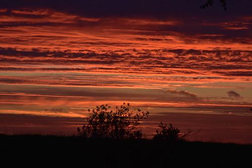 Sunset at Riverside on 17th June  (10)