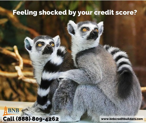 Why BNB Credit Builders | Credit Education in Erie PA